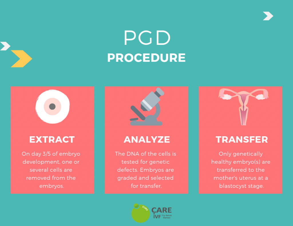 PGD testing procedure steps infographic